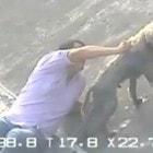 Man Rescues Dog from Canal