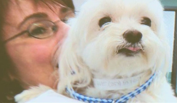 Lost Dog Found Seven Years Later and 1,800 Miles Away from Home