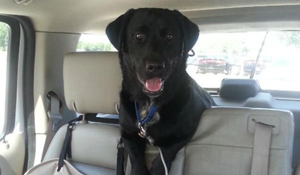 AC Officers Help Homeless Family Keep Their Dog
