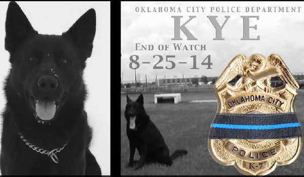 Police Dog Killed in Line of Duty, Receives Funeral with Full Honors