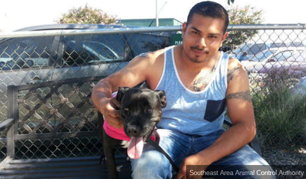 UPDATE: L.A. Freeway Dog Reunited with Owner