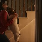 In 95 Seconds, One Video Portrays Dog Ownership. The End Is Awesome!