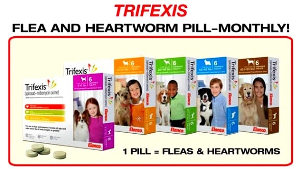 More Owners Saying Trifexis Is Killing Their Dogs
