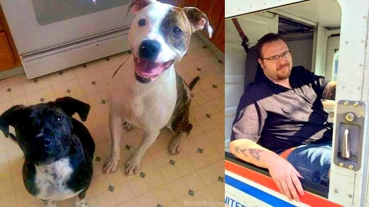 Heroic Mailman Helps Save Pit Bulls from Roaring Blaze
