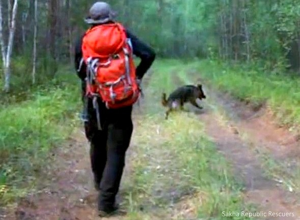 8.15.14 - Puppy Saves Toddler Lost in Siberian Wilderness for 11 Days8