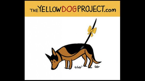 8.18.14 - Yellow Ribbon Campaign Hopes to Raise Awareness for Dogs Needing Space2