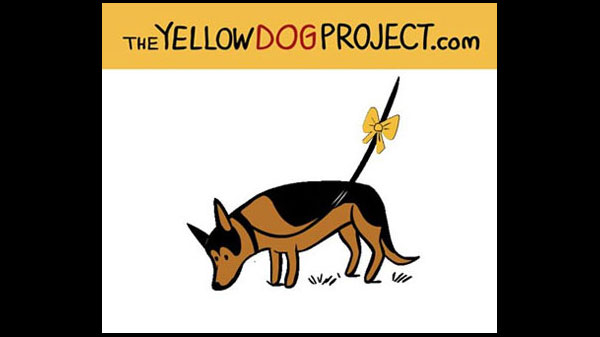 Yellow Ribbon Campaign Hopes to Raise Awareness of Dogs Needing Space