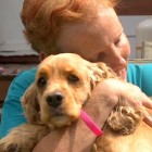 Heroic Dog Saves Her Mom from a Deadly House Fire