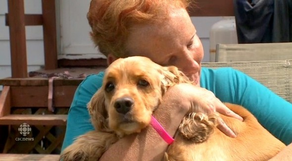 8.20.14 - Heroic Dog Saves Mom from Deadly House Fire