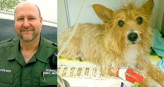 Animal Control Officer Saves Senior Dog at Death's Door