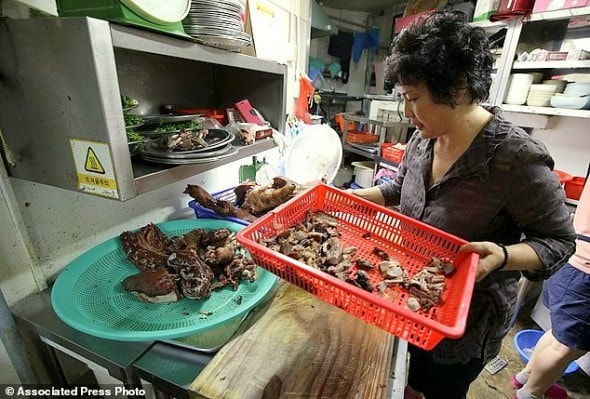 South Korea Dogs Dying Delicacy