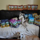 Giveaway: Natural Balance semi-moist dog treats