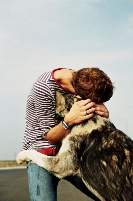 Photos Ten Dogs Giving The Best Hugs Life With Dogs