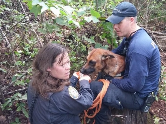Chico, the Missing Police Dog Found Alive and Well 48 Hours Later