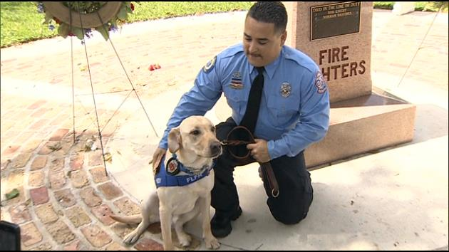 Fort Lauderdale Fire Rescue's Latest Member Has Four Paws