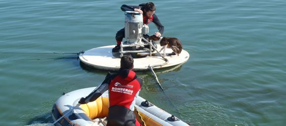 Firefighters Rescue Dog Trapped in Water Treatment Plant Tank