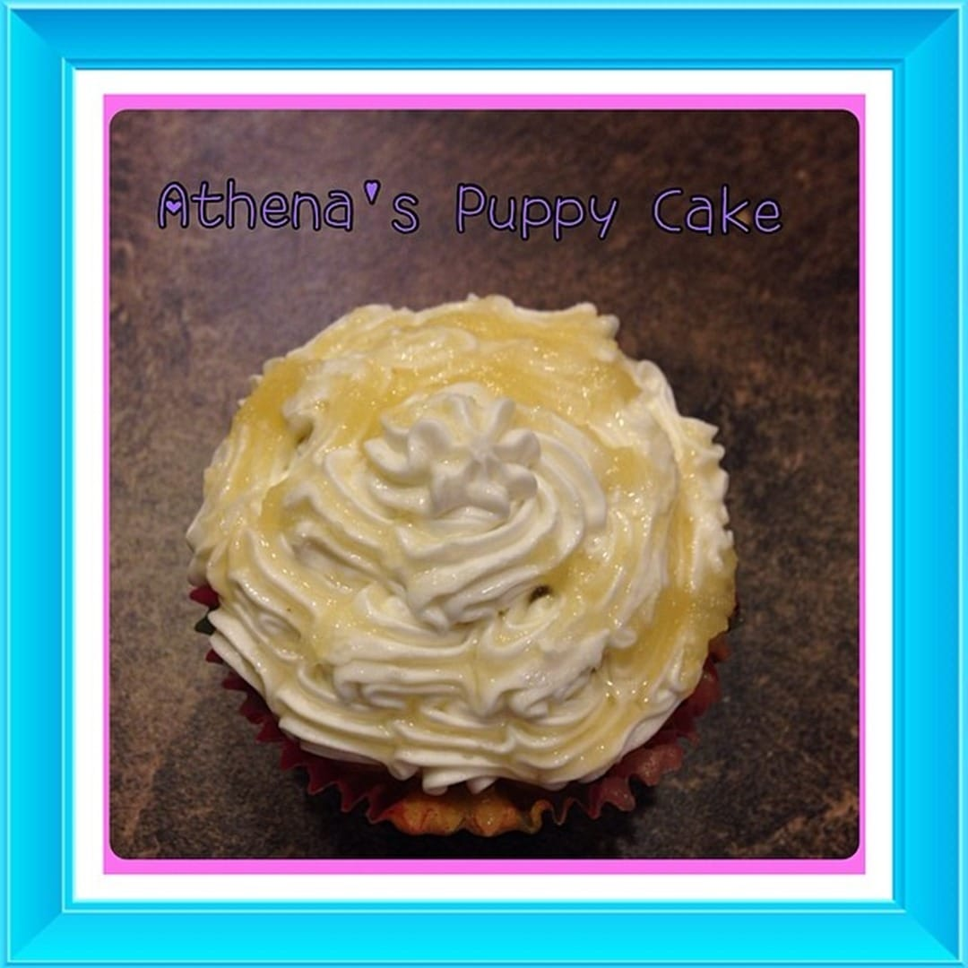 Doggy Cakes Recipe Provides All Natural Option for Treats