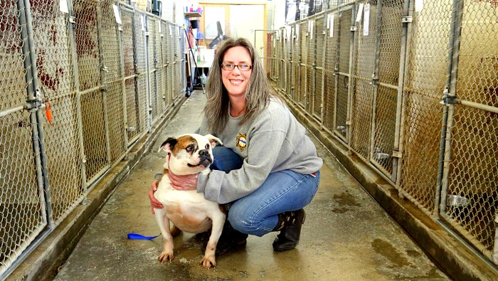 Businessman Donates $250,000 for New Ohio Dog Shelter