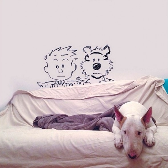 9.17.14 - Jimmy Choo, Wonder Dog5
