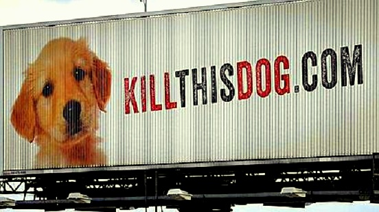 Shocking Billboard Aims to End Kill Shelters