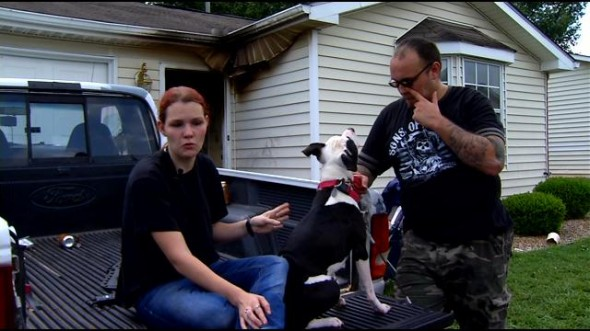 9.2.14 - Pit Bull Puppy Saves Mother and Baby from House Fire