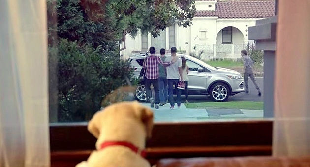 budweiser friends are waiting Adorable puppy stars in new budweiser anti drinking and driving psa the man is shown leaving his house with friends and a few buds and not coming home time may receive compensation for some links to products and services on this website.