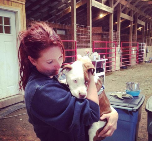 9.24.14 - From Feral Pit Bull to Family Dog Thanks to The Devoted BarnFEAT