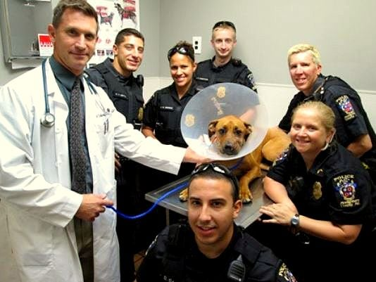 As if saving Ruby's life wasn't good enough, these officers are also helping to pay for her treatment!