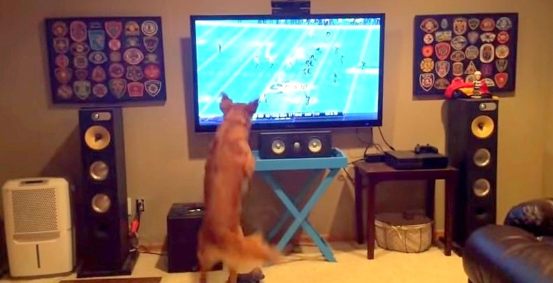 9.8.14 - Georges LOVES Football