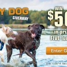 Win $500 in the Kurgo Happy Dog Giveaway!