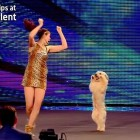 Ashleigh and Pudsey Have Got All The Right Moves