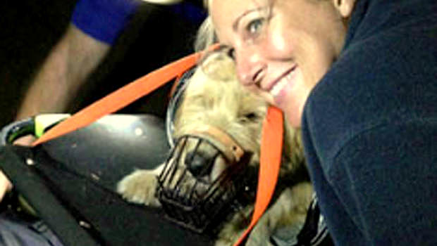 Dog Believed Dead Is Found During Her Memorial Service