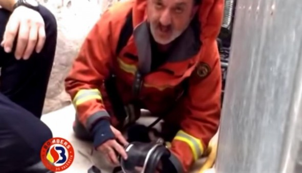 10.8.14 - Heroic Firefighter in Spain Saves Puppy Using Mouth to Mouth1