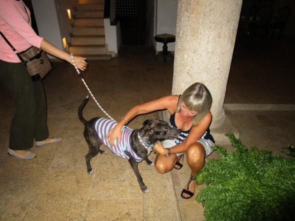 Vanda Hale reunited with her dog. Photo Credit: Vanda Hale