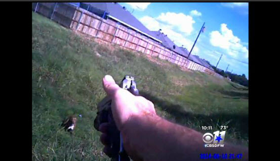 Written Police Report Contradicts Dog Shooting Footage