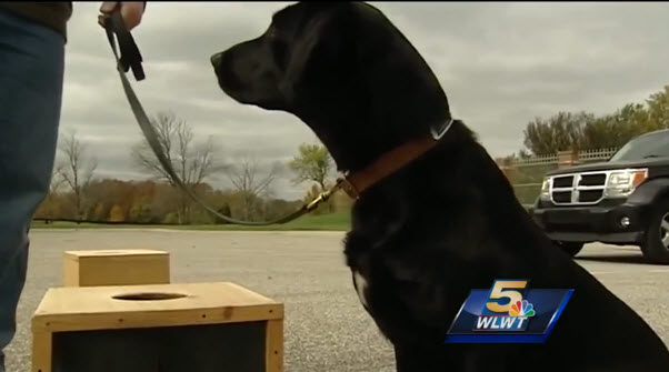 Death Row Dog Now Fights Crime