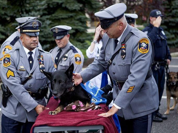 K-9 Officer Diogi Receives Emotional Farewell