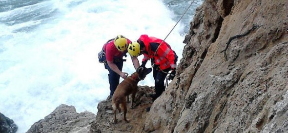Mallorca's firefighters rescue dog trapped on cliff.
