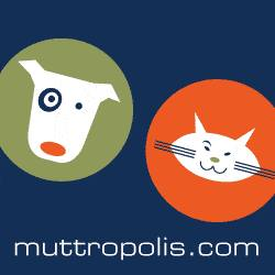 Muttropolis Speaks About Site, Products and Community