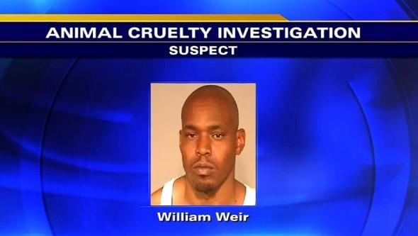 11.19.14 - Man Gets Himself Arrested for Posting Dog Fighting Video1