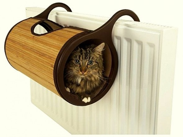 11.20.14 - Jolly Moggy Radiator Bed1