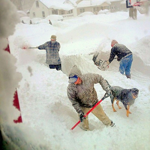 11.21.14 - Buffalo Snow Dogs7