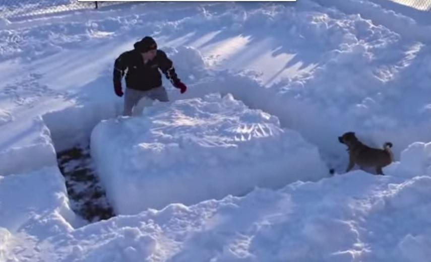 Ginzey and the Backyard Snow Maze