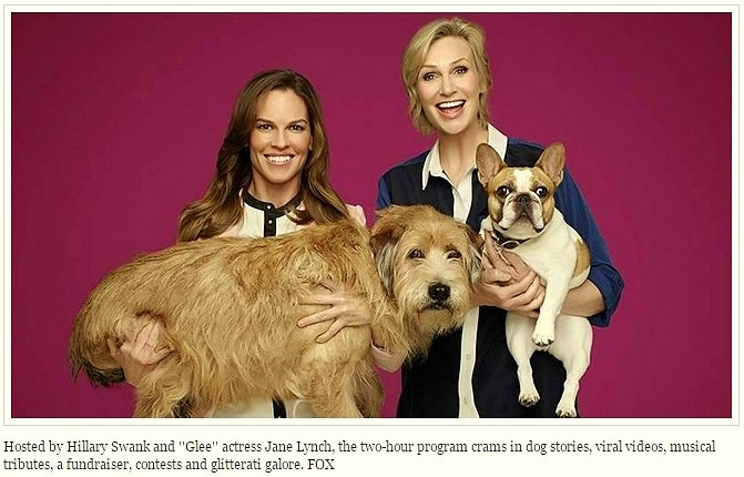 11.26.14 - Jane Lynch and Hilary Swank to Host Thanksgiving Dog-a-thon1