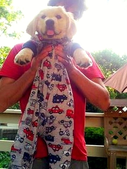 11.30.14 - Puppies in Jammies31