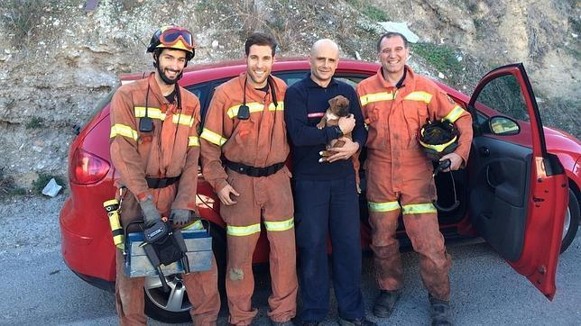 Firefighters Free Puppy Trapped Underneath Car Seat