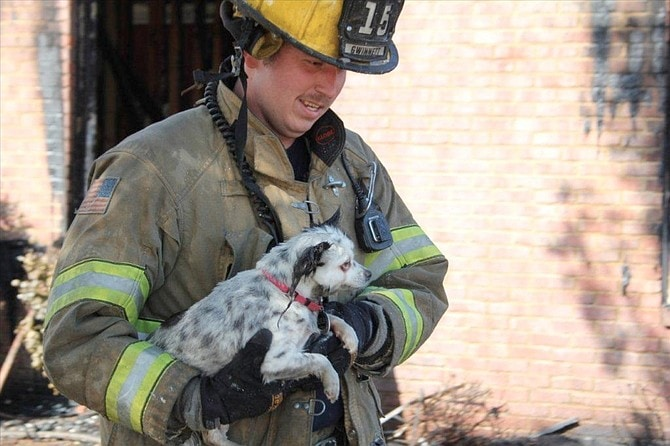 Gwinnett County Firefighter Saves Dog's Life