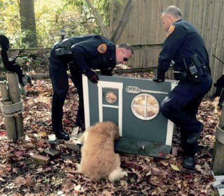 Cops Rescue Dog Trapped in Cat House