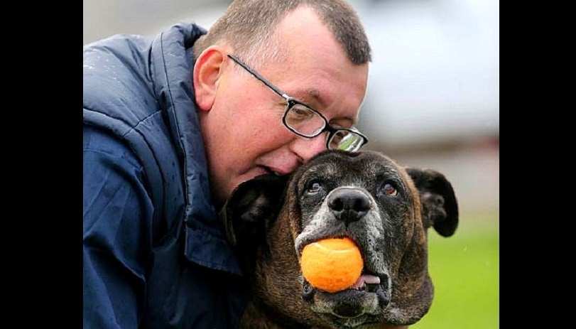 Homeless Man Walks Five Miles a Day to See His Dog