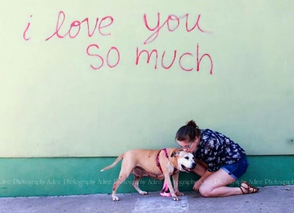 12.2.14 - 13-Year-Old Dog at Shelter for 1000 Days FINALLY Gets a Home1